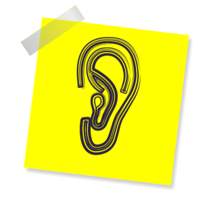 illustration of an ear