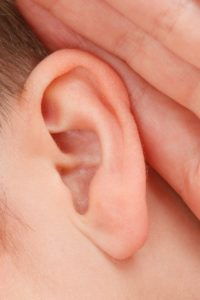 close up of an ear